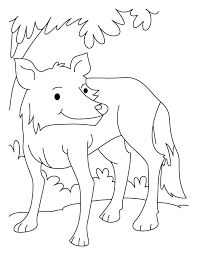 fully grown wolf coloring pages download free fully grown