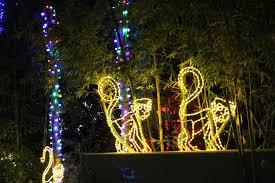 phoenix zoo lights tickets zoolights holiday display at the phoenix zoo