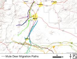 map of hwy 58 oregon deer migration map deschutes collaborative forest project