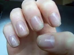 nail designs natural look nail arts