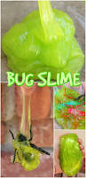123 best insects u0026 bugs images on pinterest