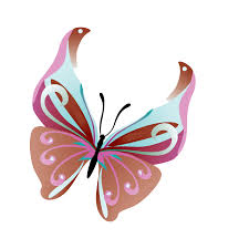 butterfly png images transparent free download pngmart com
