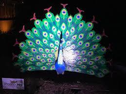 Zoo Lights Phoenix by Mad1dragon Eston James Lambrecht Deviantart