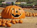 Wallpapers Backgrounds - Thanksgiving Wallpapers Legend Jack O Lantern