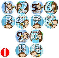amazon com blue banana monkeys baby month onesie stickers baby
