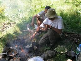 la cuisine des plantes sauvages atelier cueillette et cuisine plantes sauvages et comestibles