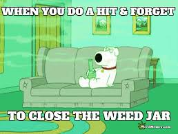 Funny Family Guy Memes - family guy stoner dog brian smoking weed memes