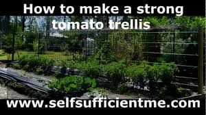 how to make a strong tomato trellis youtube