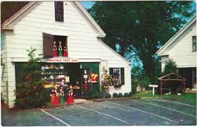 tree shop shrewsbury ma hours rainforest islands ferry