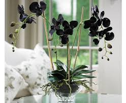 Home Decor Artificial Trees Artificial Plants For Home Decor Affordable Amazoncom Artificial
