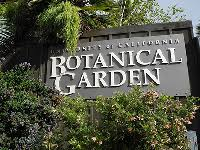 Berkeley Botanical Gardens Botanical Garden Calendar