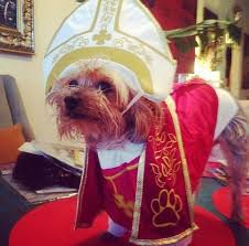 Pope Halloween Costume 15 Cool Halloween Costumes Dog Love U2013 Plush Paws Products
