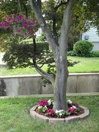 landscape design around oak trees around trees low maintainance