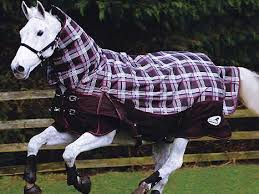 Weatherbeeta Combo Stable Rug Weatherbeeta Channel Quilt 402d Heavy Weight Stable Rug The Tack