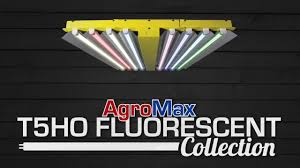 hortilux powerveg t5 fluorescent grow lights htgsupply presents the agromax t5 ho fluorescent grow lights youtube