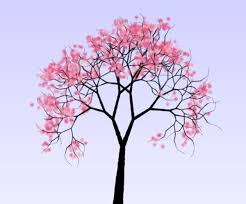 cherry blossom tree drawing a cherry blossom tree best images collections hd for