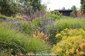 holt 904 193 photobotanic stock photography garden library