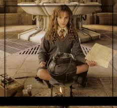 la chambre des secrets hermione granger watson dans hp et la chambre des secrets
