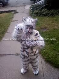 White Tiger Halloween Costume Coolest Siberian Tiger Costume Homemade Halloween