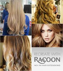 racoon hair extensions 25 best racoon hair extensions images on racoon hair