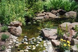 Backyard Ponds Ideas Backyard Pond Ideas Designs Pictures Small Backyard Ponds In