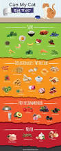can my dog eat this coolguides