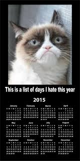 Good Grumpy Cat Meme - grumpy calendar 2015 grumpy cat know your meme