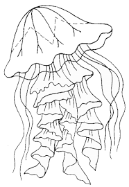 free coloring pages jellyfish coloring pages jellyfish spongebob printable preschool to print