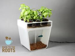 9142 best home aquaponics images on pinterest gardening