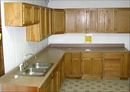 kitchen cabinets bronx new york strikingly ideas discount ny