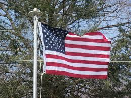 3x5 Foot Flag Flags U0026 Pennants Historical Memorabilia Collectibles