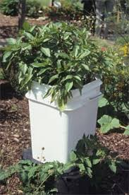 What Type Of Soil For Vegetable Garden - types of containers making herb and vegetable containers