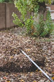 garden weeds how to keep weeds out of the garden for good
