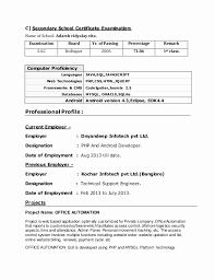 resume format exles documentation of android resume format 2 years experience beautiful android developer