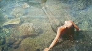 real mermaid found in india mermaids exist video dailymotion