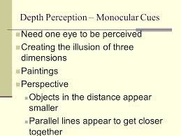 Blind In One Eye Depth Perception Perception Rules Of Perceptual Organization Gestalt Psychologists