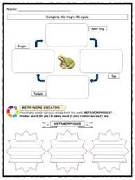 life cycle facts worksheets examples u0026 stages of life for kids