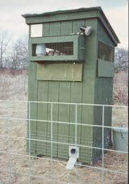 Backyard Quail Pens And Quail Housing by Quail Recall Pen Google Search Quail Recall Pen Pinterest