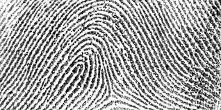 midterm project proposal biometrics u2013 rebecca ricks