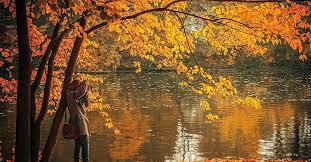 england fall foliage tours