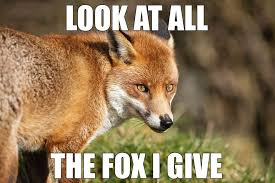Meme Fox - look at all the fox i give meme boomsbeat
