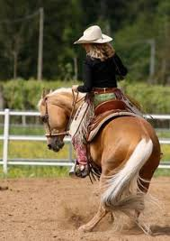 chillypepperhothothot u201chowdy by blackhawk32 on flickr u201d cowboy