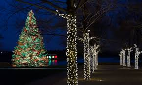 city and suburban holiday light displays chicago things to do