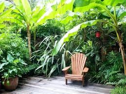 Tropical Backyard Ideas Tropical Backyard Plans U2013 Mobiledave Me
