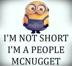 I M Not Short I M Concentrated Awesome 26 Best Not Short Fun Size Images On Pinterest Short Girls