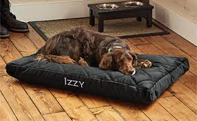 Elevated Dog Beds For Large Dogs Dog Beds Memory Foam Tempur Pedic U0026 Bolster Beds Orvis