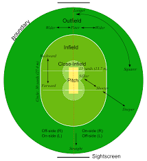cricket documents