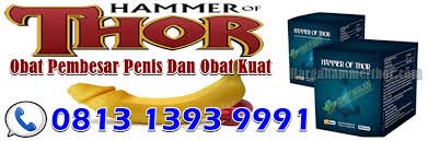 agen hammer of thor asli di jogja yogyakarta jual hammer of