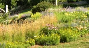 garden design garden design with butterfly and hummingbird garden