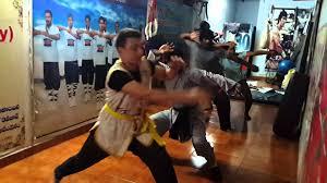 shaolin kung fu basics animal style training camp teach